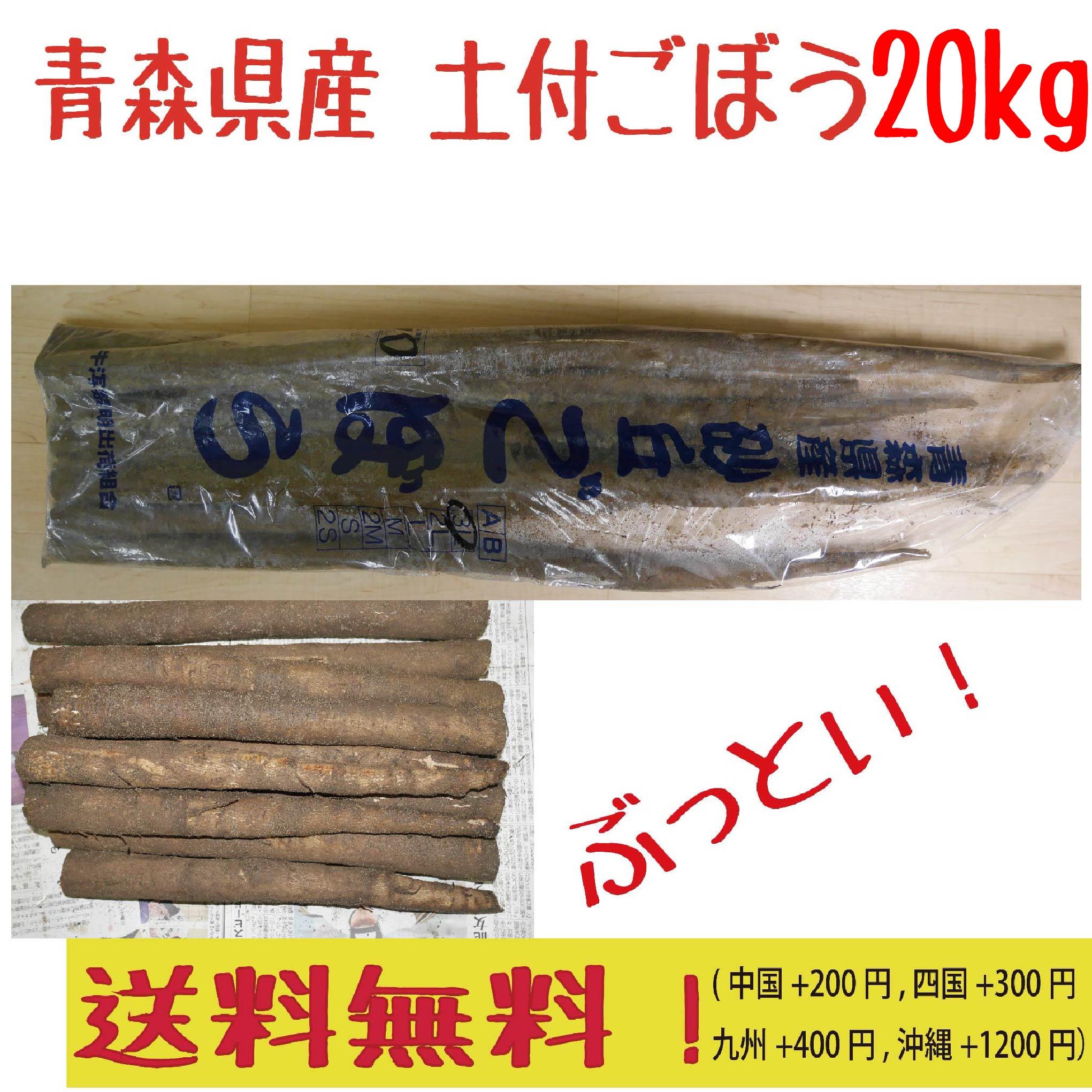 青森県産 車力 高級な 土付き 砂丘ごぼう 通販 20kg 送料無料 3L