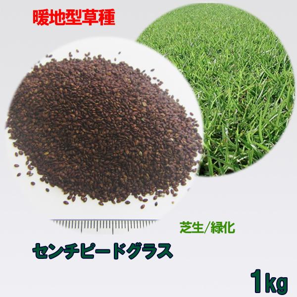 種子 センチピードグラス 1kg 送料無料