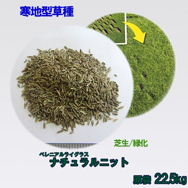 種子 ペレニアルライグラス ナチュラルニット 22.5kg 送料無料