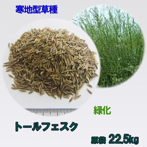 種子 トールフェスク 22.5kg 送料無料