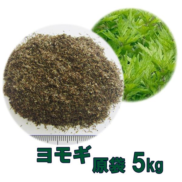 買い保障できる 種子 種子 送料無料 ヨモギ 5kg 5kg 送料無料, ヒロネットショップ:471228b1 --- construart30.dominiotemporario.com