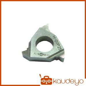 三和 外径三角ネジ切チップ P2.5 09P25 3030 10個