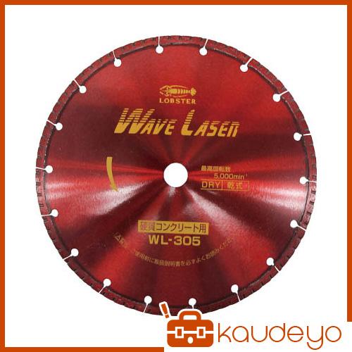 エビ ダイヤモンドホイール ウェブレーザー(乾式) 304mm穴径20mm WL30520 1065