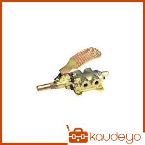 TAIYO フートバルブ 1/4 4F20 7500