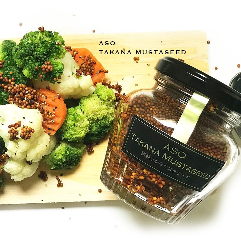 格安 価格でご提供いたします 送料無料 化粧箱入りたかな種で作ったマスタード 熊本 阿蘇たかなマスタシード 熊本産 阿蘇たかな 阿蘇名物 情熱セール 菊池食品 土産