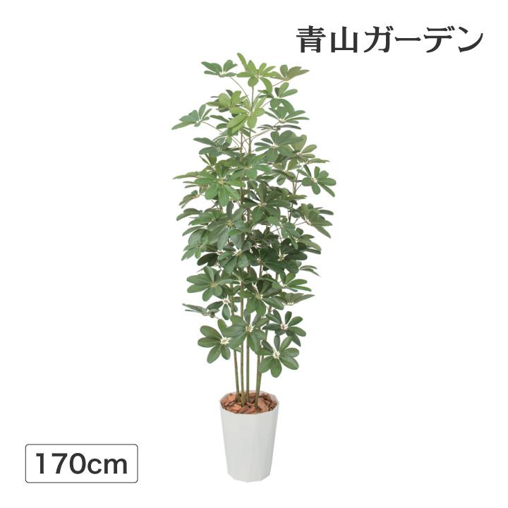 人工植物 造花 フェイク グリーン ディスプレイ 飾り タカショー 母の日 2019 / シェフレラ 1.7m /C