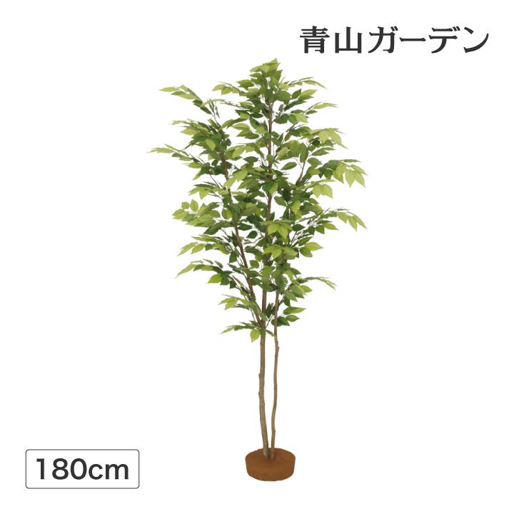 人工植物 造花 フェイク グリーン ディスプレイ 飾り タカショー 母の日 2019 / ケヤキ 鉢無 1.8m /C