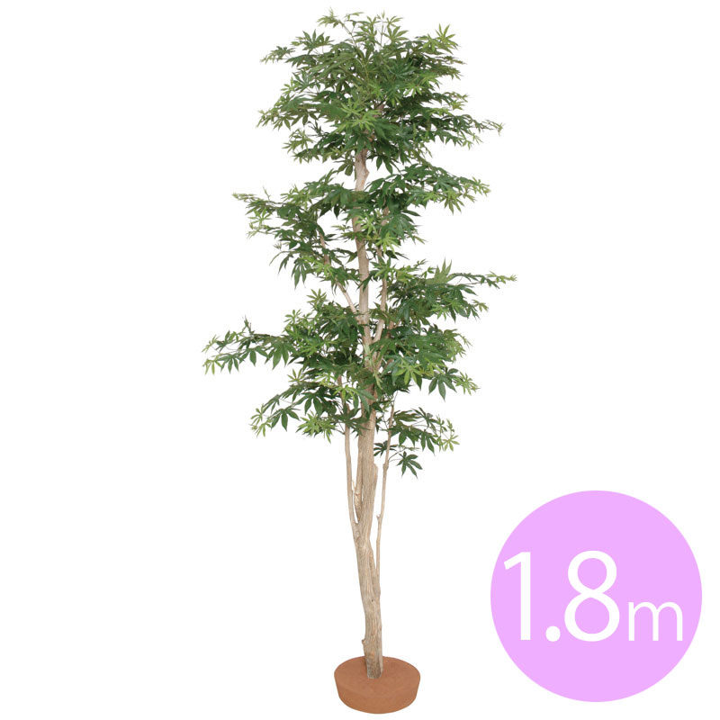 人工植物 造花 フェイク グリーン ディスプレイ 飾り タカショー 母の日 2019 / もみじ 鉢無 1.8m /C