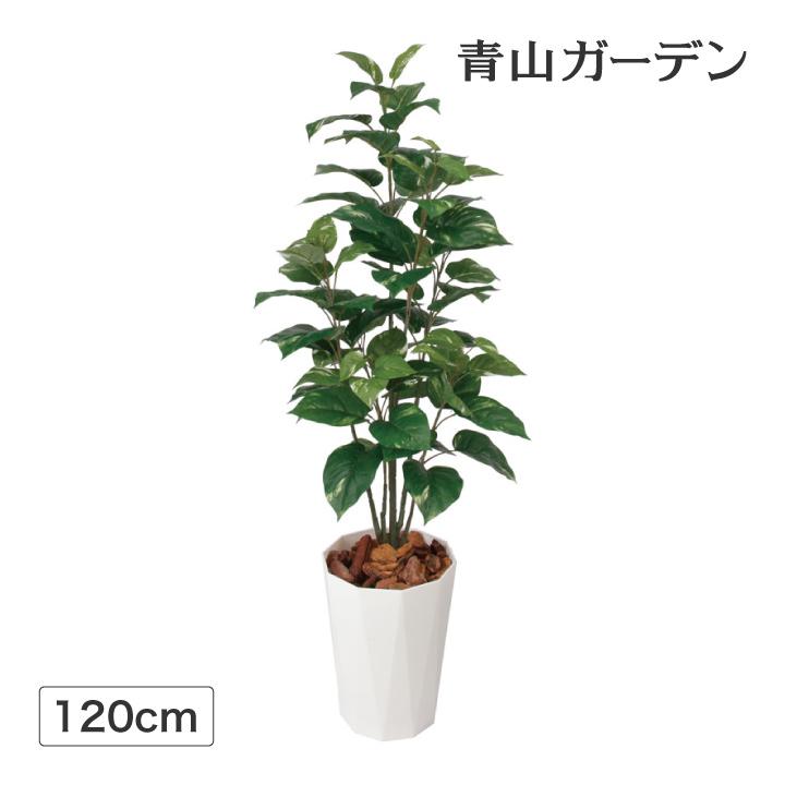 人工植物 造花 フェイク グリーン ディスプレイ 飾り タカショー 母の日 2019 / ポトス 1.2m /B