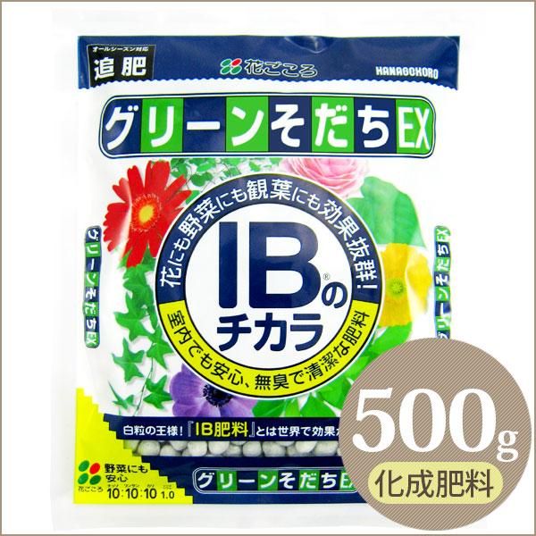 肥料 菜園 ガーデニング 園芸 / グリーンそだちEX IBのチカラ 500g /A