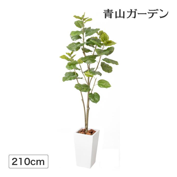 人工観葉植物 造花 業務用 施設 オフィス 店舗 装飾 フェイク グリーン タカショー / ウンベラータ 2.1m /E