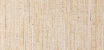 TOTOハイドロセラウォール AA240#HT11P内装用大型陶板3×8サイズ910×2415ミリメーカー直送