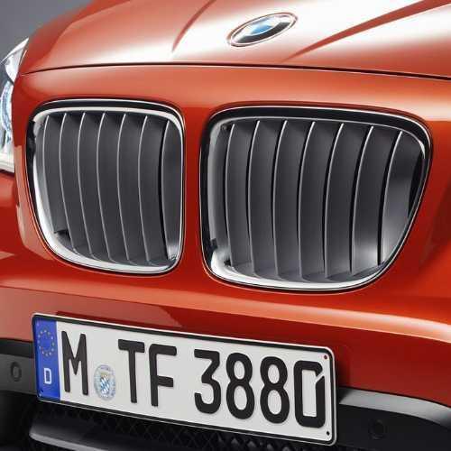 BMW純正 キドニー・グリル(xLine) 左右セット(E84)(2012/07~)