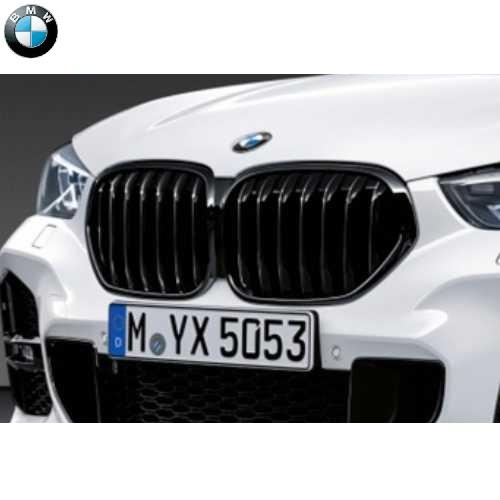 BMW純正 ブラック・キドニー・グリル(F48)
