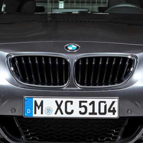 BMW純正 キドニー・グリル(F22)