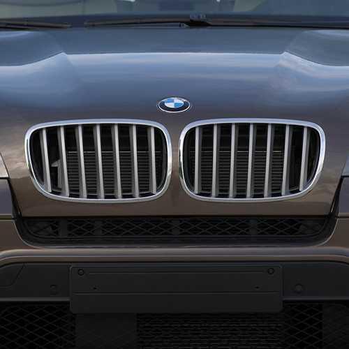 BMW純正 キドニー・グリル・チタン(E70)