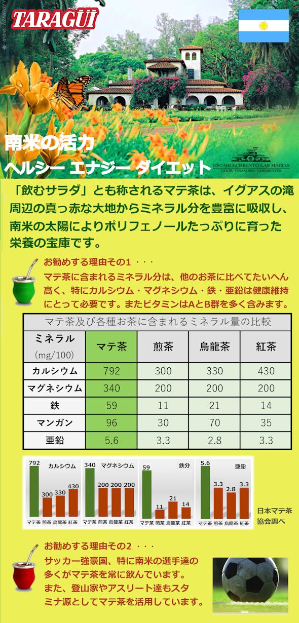 タラグイマテ茶リーフレット2