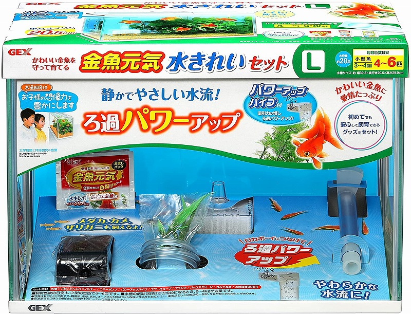 熱帯魚 飼育用品 ご予約品 金魚飼育がスタート出来る水槽セット GEX 水きれいセットL水槽セット 商品 金魚元気