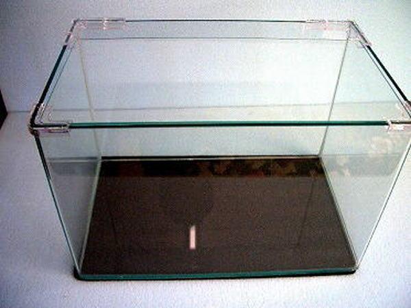 前面曲げ インテリアガラス水槽 60×30×36 (約50リッター)