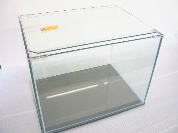 インテリアガラス水槽 60ワイド 60×45×45 (8mmガラス)