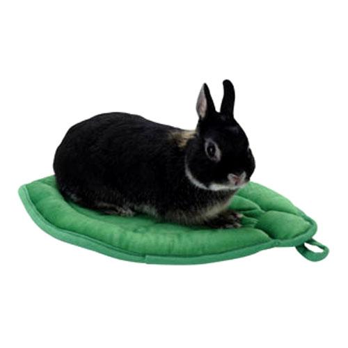 うさぎ ラビット おふとん あったかい 木の葉のクッション 小動物 ミニウサギ サンコー 新商品 新型 直営限定アウトレット