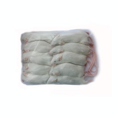 通常商品と同梱不可/ 冷凍 国産リタイヤマウス 50匹