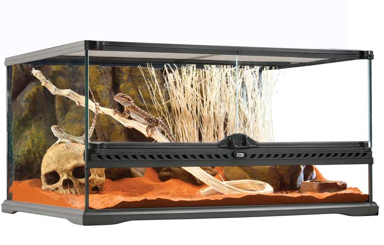 GEX エキゾテラ グラステラリウム6030(サイズ:61.5x46.5x高さ33cm)