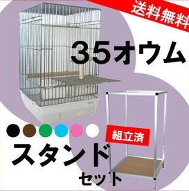35オウム+ 35スタンド(組立済)セット※大型商品の為、別途送料加算