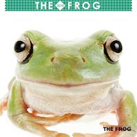 2019年ミニカレンダー THE FROG(カエル)【オリジナルステッカー付き】