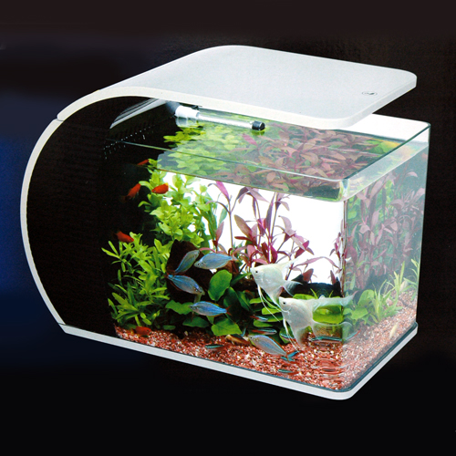 Tetra LED arc Aquarium ARC-43