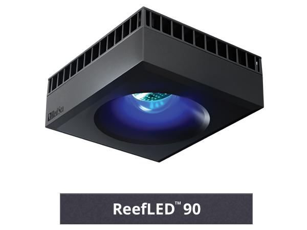 RedSea ご予約品 REEF LED 90 SALE開催中 アクアリウム アクアテイラーズ 無脊椎 熱帯魚