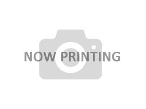 【取り寄せ】ナプコリミテット ライフガード殺菌灯 QL-40W用交換球