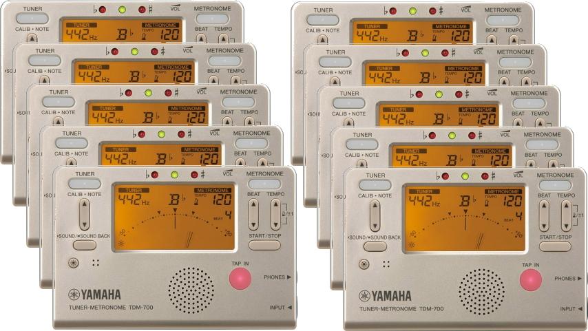 YAMAHA TDM-700G ゴールドカラー10個セット販売