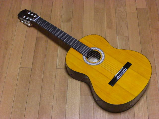Angelica Classic Guitar AKN-15