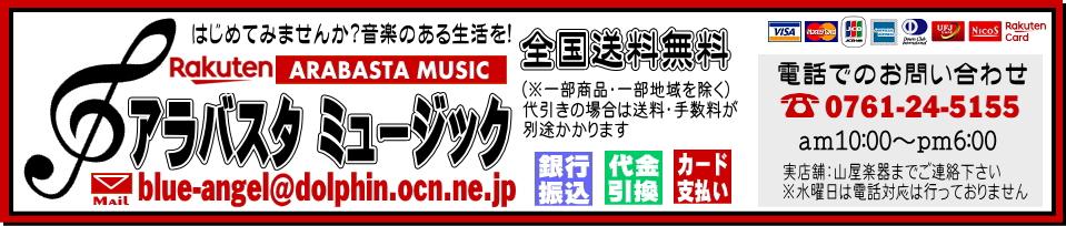 アラバスタ ミュージック:入手困難なレアなメーカーや人気商品を中心に販売!こだわりの楽器専門店