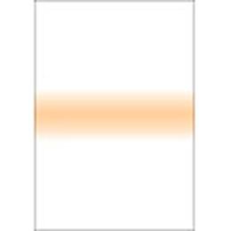 【メール便OK】LEE 100×150mm角 フォトグラフィック樹脂フィルター ストライプ ペールコーラルストライプ /LEE ペールコーラルストライプ 389560