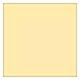 【メール便OK】LEE 100×100mm角 フォトグラフィック樹脂フィルター アンティーク・スウェード /LEE No.1 389096