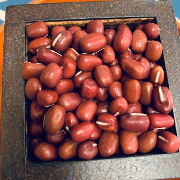中間地で6月末~7月末播き 信用 10月下旬~11月下旬収穫 丹波大納言小豆のタネ 200ミリリットル入り 価格 約600粒