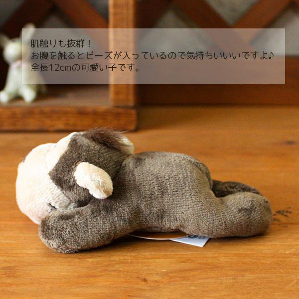 독일에서 태어난 귀여운 마그넷 마스코트 「 매 그 니 ~ 원숭이 (궁금) ~ 」