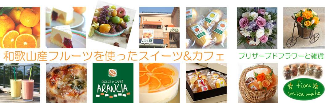 ARANCIA mica male:フルーツ王国和歌山の色々なフルーツをはじめ素材にこだわったケーキ