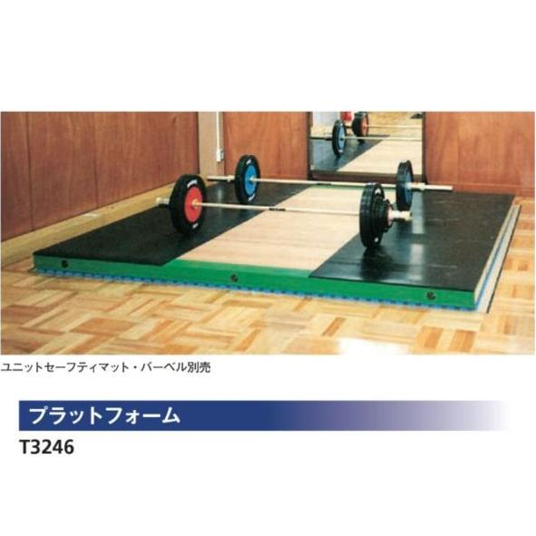 NISHI ニシスポーツ プラットフォーム T3246 受注生産・直送品 トレーニング フィットネス ウエイト