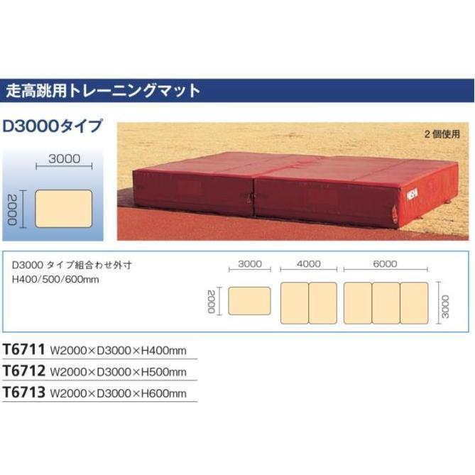 NISHI ニシ・スポーツ 走高跳用トレーニングマット (L3000×H400)T6711 受注生産・直送品 15%OFF!! 陸上競技