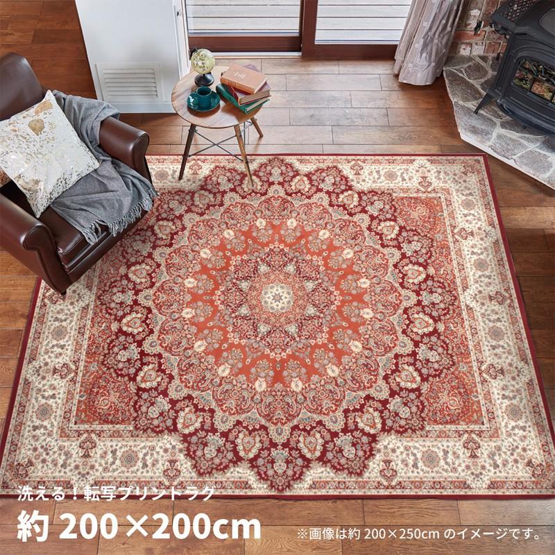 ラグマット プリシア pricia 200×200cm ラグ 絨毯 ホットカーペット 角形 正方形 秋冬 やわらか ウォッシャブル 洗える おしゃれ arco