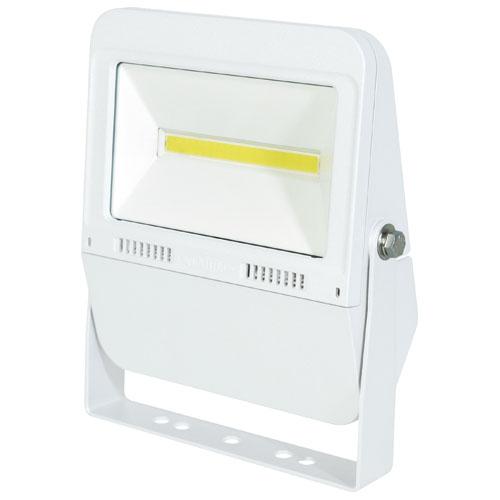 日動 常設用LEDフラットライト30W 白(昼白色) LJS-F30D-W-50K