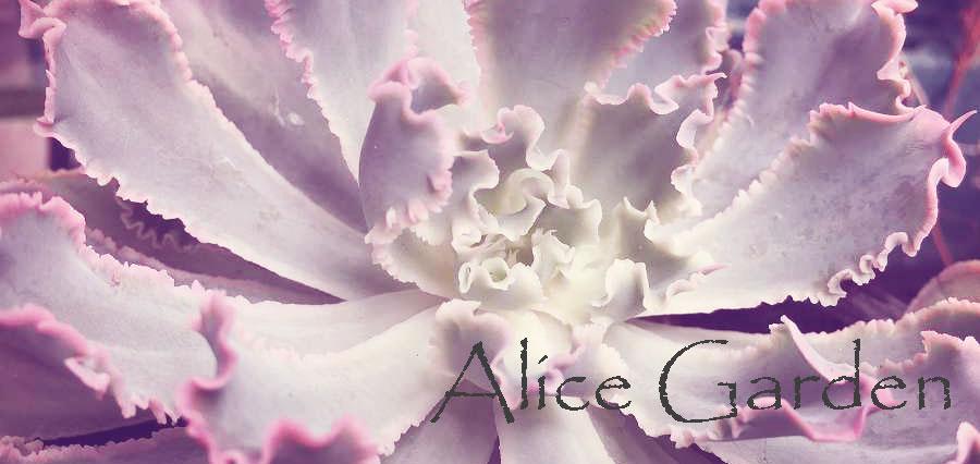 アリスガーデン:観葉植物 鉢花 花苗 コニファー