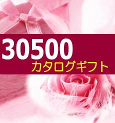 カタログギフト 32025円コース