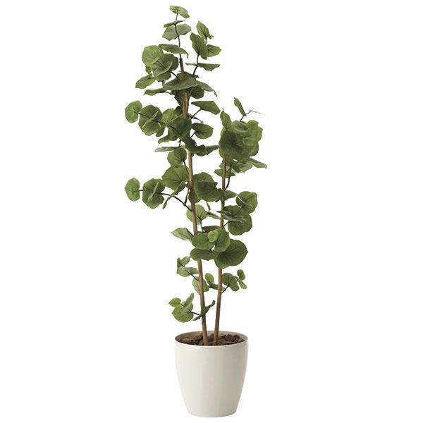 観葉植物 オフィス 玄関 エントランス ロビー リビング カフェ フェイクグリーン 消臭 フェイク 光触媒 インテリアグリーン おしゃれ 植物 植物 人工観葉植物 大型 グリーン シーグレープ1.6 高さ160cm