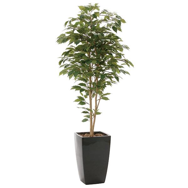 人工観葉植物 インテリアグリーン 光触媒 観葉植物 フェイクグリーン 大型 フェイク グリーン インテリア 植物 人工植物 高さ180cm アーバンベンジャミン1.8 消臭 抗菌 防汚