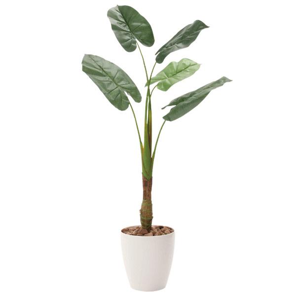 人工観葉植物 インテリアグリーン 光触媒 観葉植物 フェイクグリーン フェイク グリーン インテリア 植物 人工植物 高さ135cm くわず芋1.35 消臭 抗菌 防汚