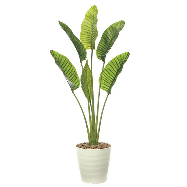 人工観葉植物 観葉植物 屋外対応 フェイクグリーン インテリア 屋外庭園 植栽 人工植物 リアル 大きめ ギフト リビング 大型 高さ180cm ディスプレイ ダイニング おしゃれ 造花 オーガスタ 商業施設 インテリアグリーン